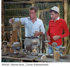 Professor and Gilligan